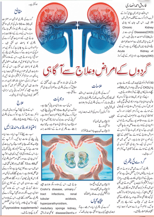 All About Kidney Disease & Its Treatment in Urdu & English Languages
