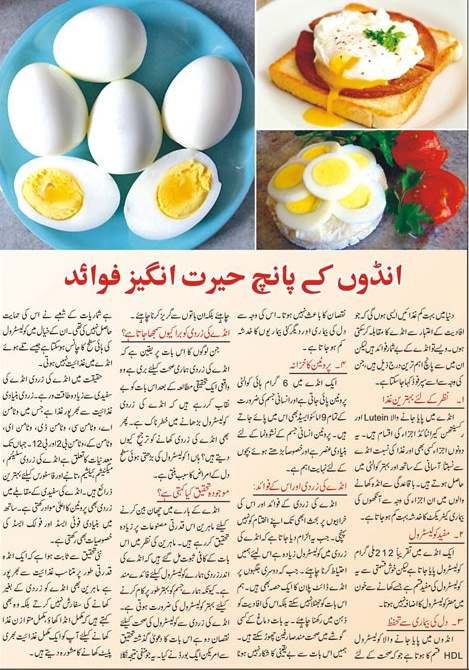 Top Five Very Important Benefits of Eggs-Tips in Urdu & English